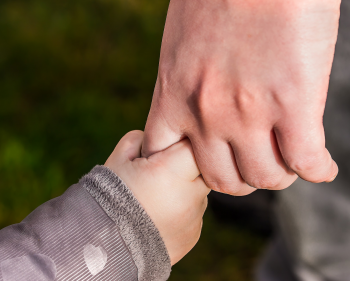 Picture of toddler and adult hand